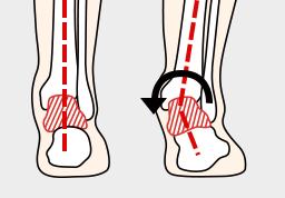 体と足のバランス