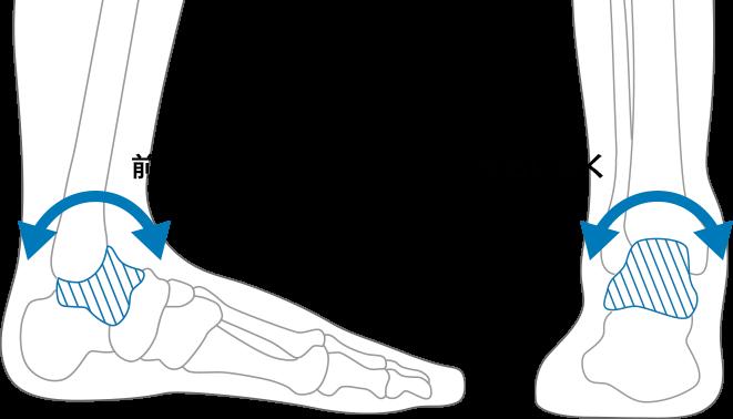距骨の動きの図