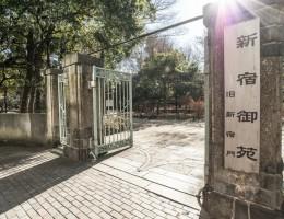 飯田橋 四ツ谷の外反母趾治療の専門院